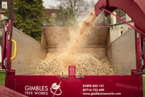 Waste wood being processed in GTW chipper